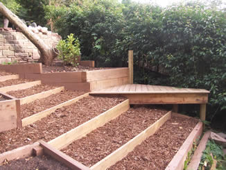 Steep garden sorted, bark paths and planting boxes